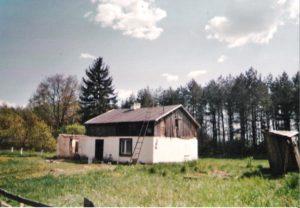 Reste des ehemaligen Birkenhof 2008