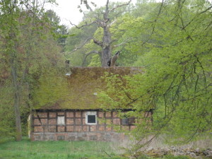 Mitarbeiterhaus Schloss Balfanz, 2010