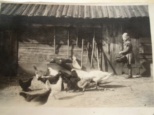 Gut Carlshöh, Ilse Hackbarth beim Füttern